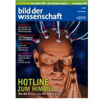 bdw Ausgabe 01/2013
