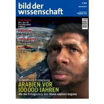 bdw Ausgabe 02/2013