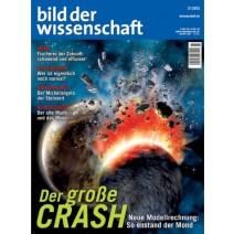 bdw Ausgabe 03/2013