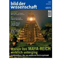 bdw Ausgabe 04/2013