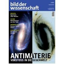 bdw Ausgabe 06/2012