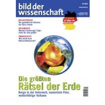 bdw Ausgabe 10/2013