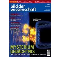 bdw Ausgabe 12/2012