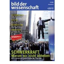 bdw Ausgabe 12/2013