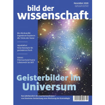 bdw Ausgabe 11/2020