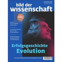 bdw Ausgabe 11/2014