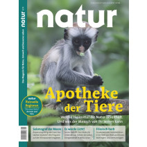 natur DIGITAL 02/2019