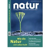 natur 10/2013