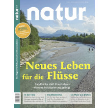 natur DIGITAL 08/2020