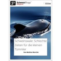 scienceblogs.de-eMagazine 07/2017