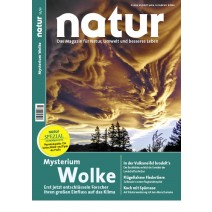 natur 11/2013