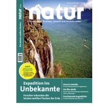 natur 12/2013