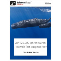scienceblogs.de-eMagazine 06/2019