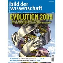 bdw Ausgabe 01/2009