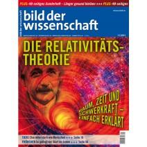 bdw Ausgabe 01/2011