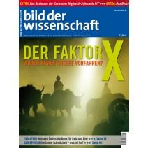 bdw Ausgabe 02/2011