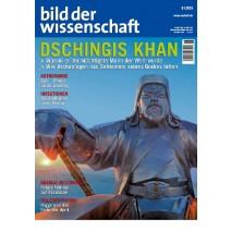 bdw Ausgabe 06/2013