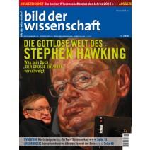 bdw Ausgabe 11/2010