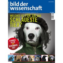 bdw Ausgabe 12/2010