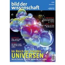 bdw Ausgabe 01/2014