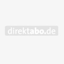 db Buch: Die Kunst der Putzfassade
