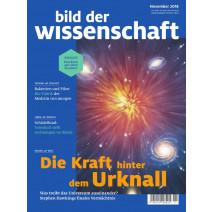bdw Ausgabe 11/2018: Urknall