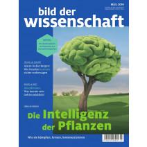 bdw Ausgabe 03/2019: Die Intelligenz der Pflanzen