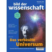 bdw Ausgabe 11/2019: Das verbeulte Universum