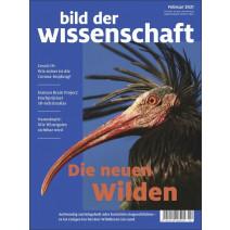 bdw digital Ausgabe 02/2021