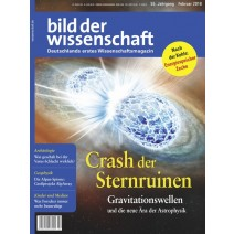 bdw digital Ausgabe 02/2018: Crash derSternruinen