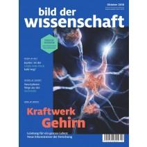 bdw Ausgabe 10/2018: Kraftwerk Gehirn