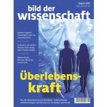 bdw DIGITAL Ausgabe 08/2020: Überlebenskraft