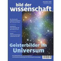 bdw Ausgabe 11/2020: Geisterbilder im Universum