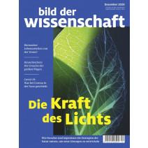 bdw Ausgabe 12/2020: Die Kraft des Lichta