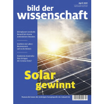 bdw Ausgabe 4/2021: Solar gewinnt