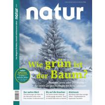 natur Ausgabe 12/2019: Wie grün ist der Baum?