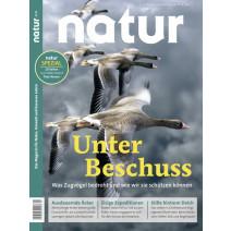 natur Digital Ausgabe 04/2020: Zugvögel unter Beschuss