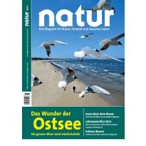 natur 08/2013