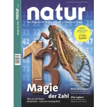 natur 08/2017: Die Magie der Zahl