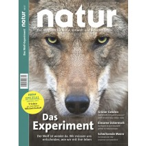 natur 09/2017: Die Magie der Zahl