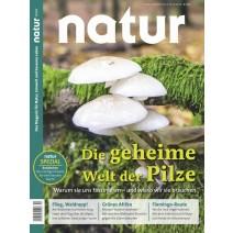 natur 10/2018: Pilze