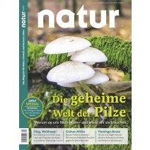 natur DIGITAL 10/2018: Pilze