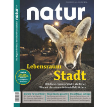 natur 05/2019: Wildtiere in der Stadt